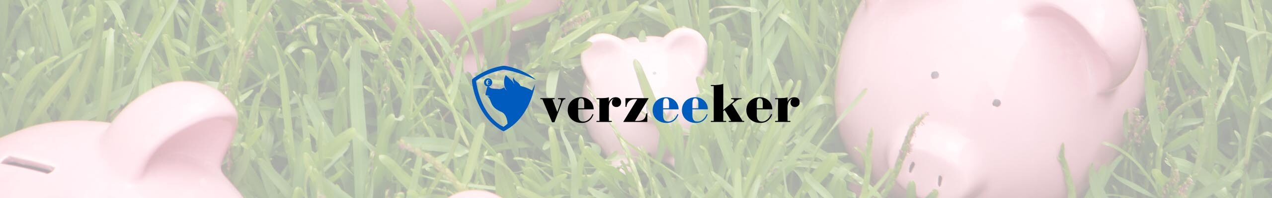 verzEEker.nl voor alle besparingen!